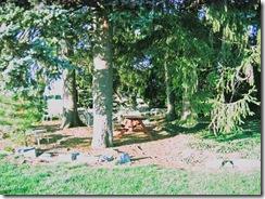 Picnic-grove